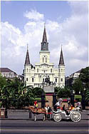 New Orleans:  Not Merely a Destination, It's an Experience!